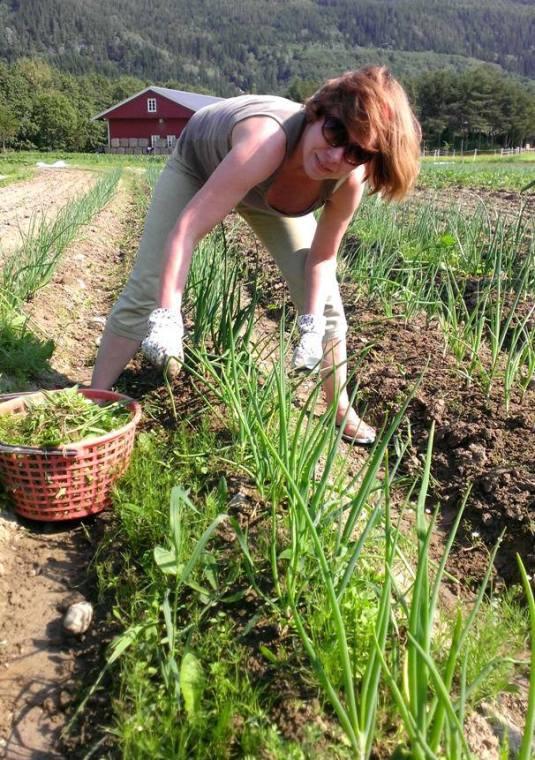 Andelseierne deltar i dyrkinga og ser produktene vokse fram gjennom sesongen
