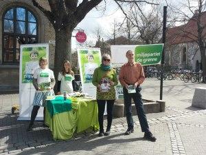 De Grønne mobiliserer både gamle og unge.