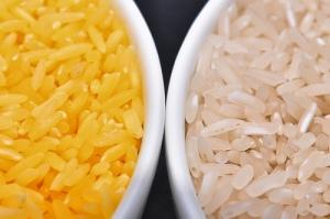 """Gulrot-genene gir """"gyllen ris"""" en karakteristisk farge."""