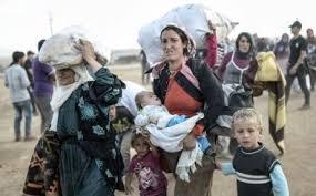 Yezidier på flukt fra ISILs massakrer på Sinjar.