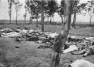 Døde armenere i Anatolia, 1915.