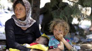 flyktninger fra Sinjar